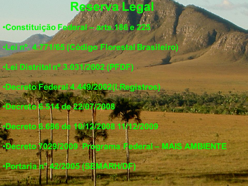 Reserva Legal Constituição Federal – arts.186 e 225 Lei nº. 4.771/65 (Código Florestal Brasileiro) Lei Distrital nº 3.031/2002 (PFDF) Decreto Federal