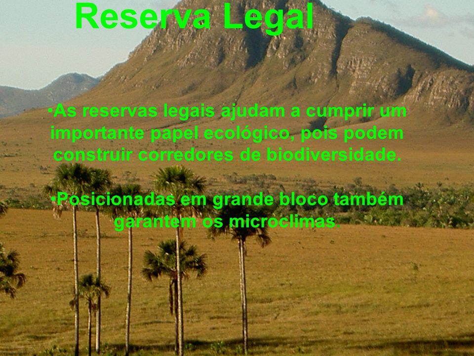 Reserva Legal As reservas legais ajudam a cumprir um importante papel ecológico, pois podem construir corredores de biodiversidade. Posicionadas em gr