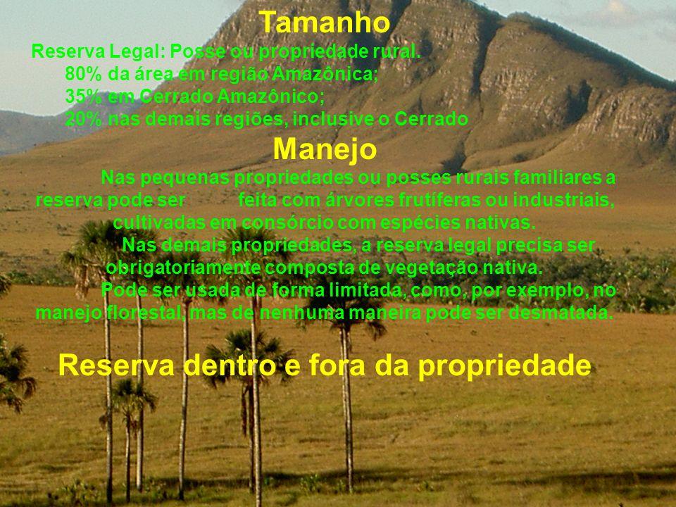 Tamanho Reserva Legal: Posse ou propriedade rural. 80% da área em região Amazônica; 35% em Cerrado Amazônico; 20% nas demais regiões, inclusive o Cerr