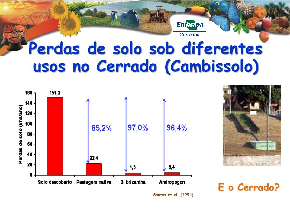 Perdas de solo sob diferentes usos no Cerrado (Cambissolo) E o Cerrado? Santos et al. (1994)