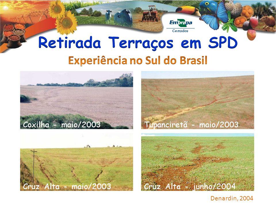 Coxilha - maio/2003Tupanciretã - maio/2003 Cruz Alta - maio/2003Cruz Alta - junho/2004 Denardin, 2004