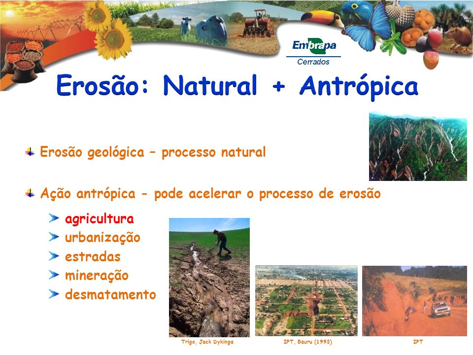 Erosão geológica – processo natural Ação antrópica - pode acelerar o processo de erosão agricultura urbanização estradas mineração desmatamento IPT, B