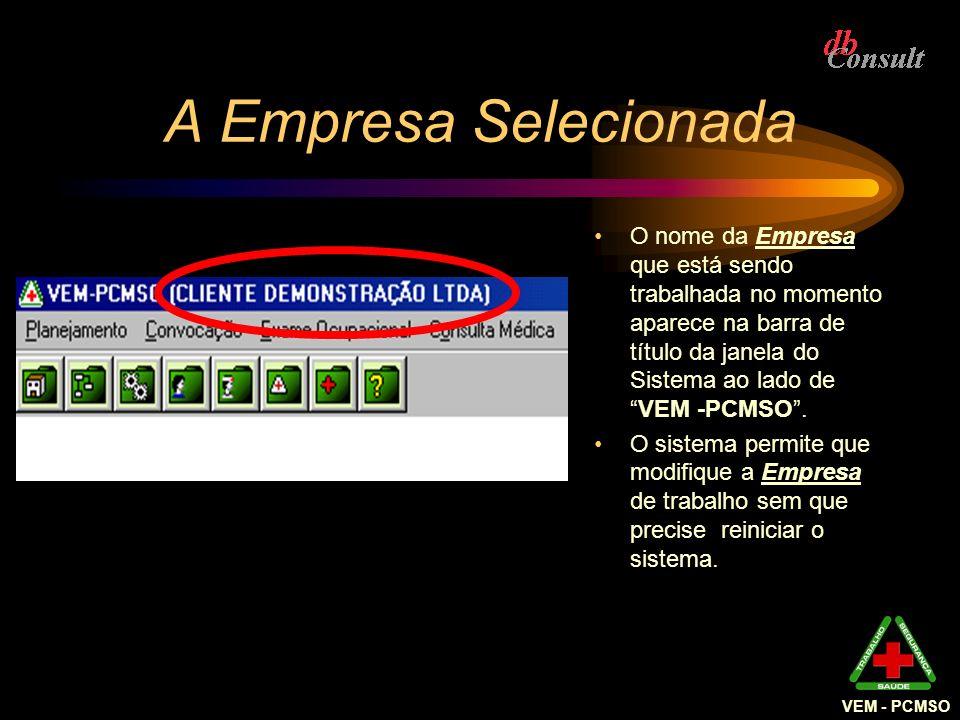 A Empresa Selecionada O nome da Empresa que está sendo trabalhada no momento aparece na barra de título da janela do Sistema ao lado deVEM -PCMSO. O s