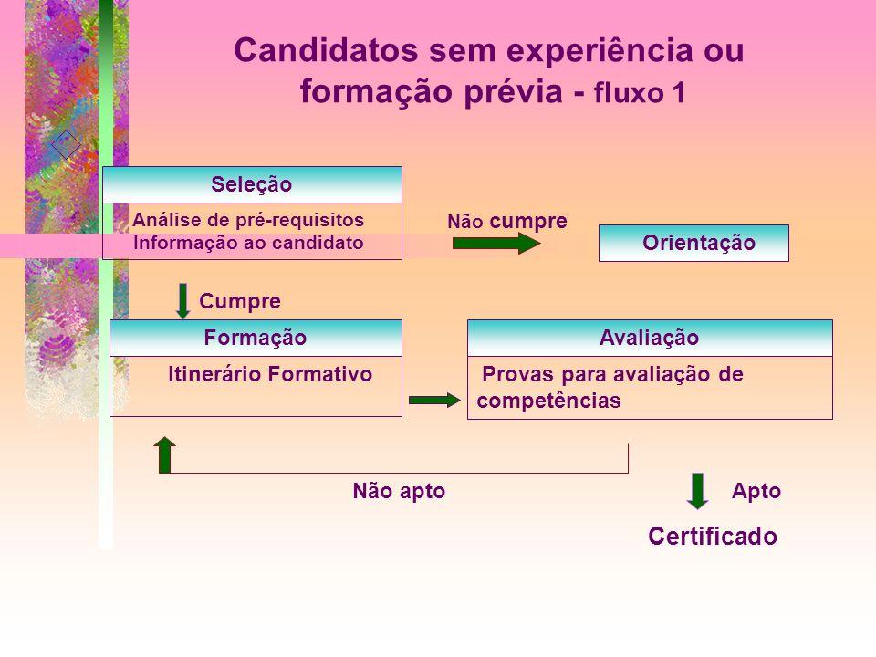 Candidatos sem experiência ou formação prévia - fluxo 1 Seleção Análise de pré-requisitos Informação ao candidato Não cumpre Orientação Cumpre Formaçã