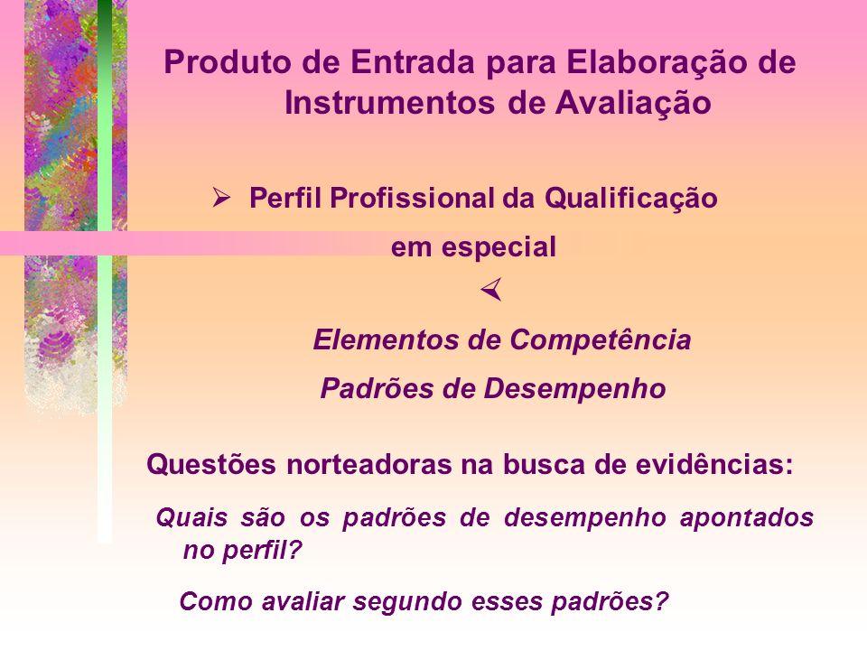 Produto de Entrada para Elaboração de Instrumentos de Avaliação Perfil Profissional da Qualificação em especial Elementos de Competência Padrões de De