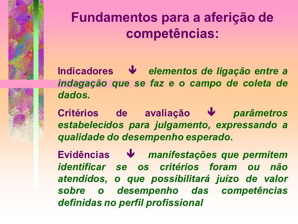 Fundamentos para a aferição de competências: Indicadores elementos de ligação entre a indagação que se faz e o campo de coleta de dados.