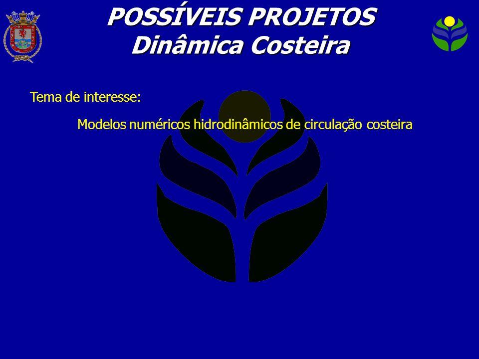 Tema de interesse: Modelos numéricos hidrodinâmicos de circulação costeira POSSÍVEIS PROJETOS Dinâmica Costeira