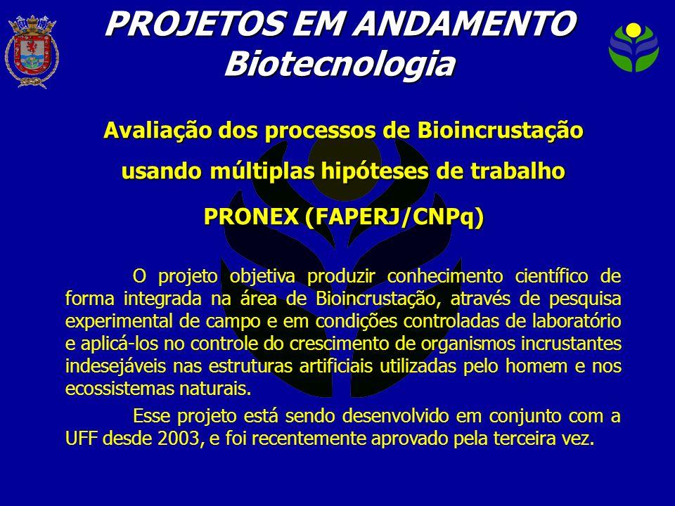 PROJETOS EM ANDAMENTO Biotecnologia Avaliação dos processos de Bioincrustação usando múltiplas hipóteses de trabalho PRONEX (FAPERJ/CNPq) O projeto ob