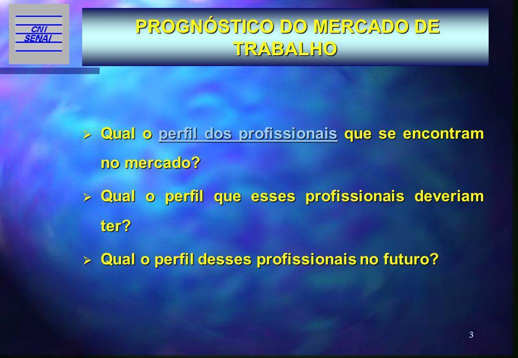 14 Subfase 3 – Configuração do Perfil Profissional O Perfil Profissional é composto das Competências Profissionais e do Contexto de Trabalho da Qualificação.