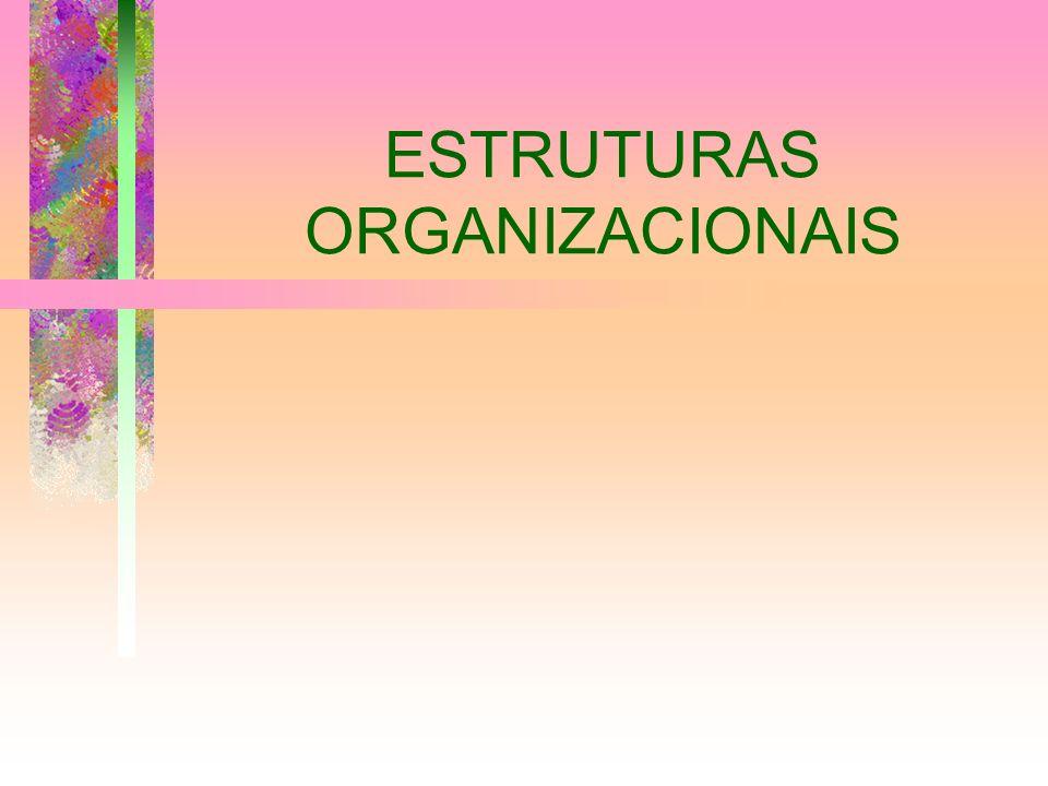 ESTRUTURA Ordenação e agrupamento de atividades e recursos, visando ao alcance de objetivos e resultados estabelecidos É o arranjo racional das partes de um organismo, obedecendo a interdependência dos órgãos e sua hierarquia funcional O processo de estruturar um organismo ou empresa é chamado de Estruturação
