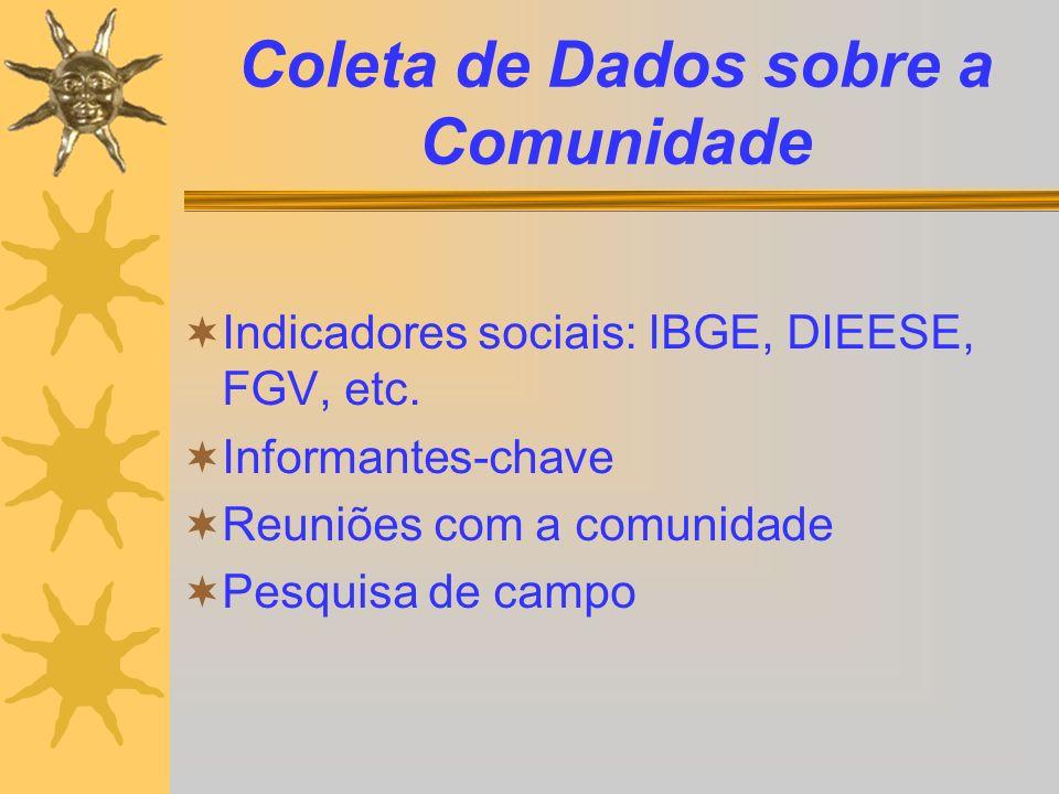 Coleta de Dados sobre a Comunidade Indicadores sociais: IBGE, DIEESE, FGV, etc. Informantes-chave Reuniões com a comunidade Pesquisa de campo