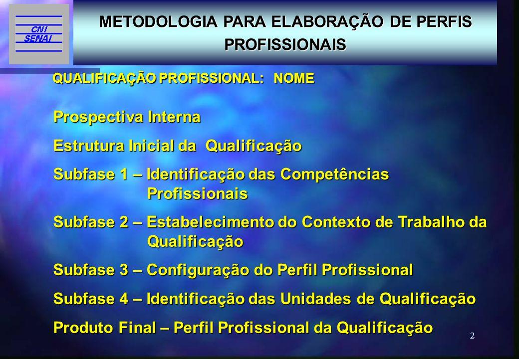 2 QUALIFICAÇÃO PROFISSIONAL: NOME METODOLOGIA PARA ELABORAÇÃO DE PERFIS PROFISSIONAIS Prospectiva Interna Estrutura Inicial da Qualificação Subfase 1