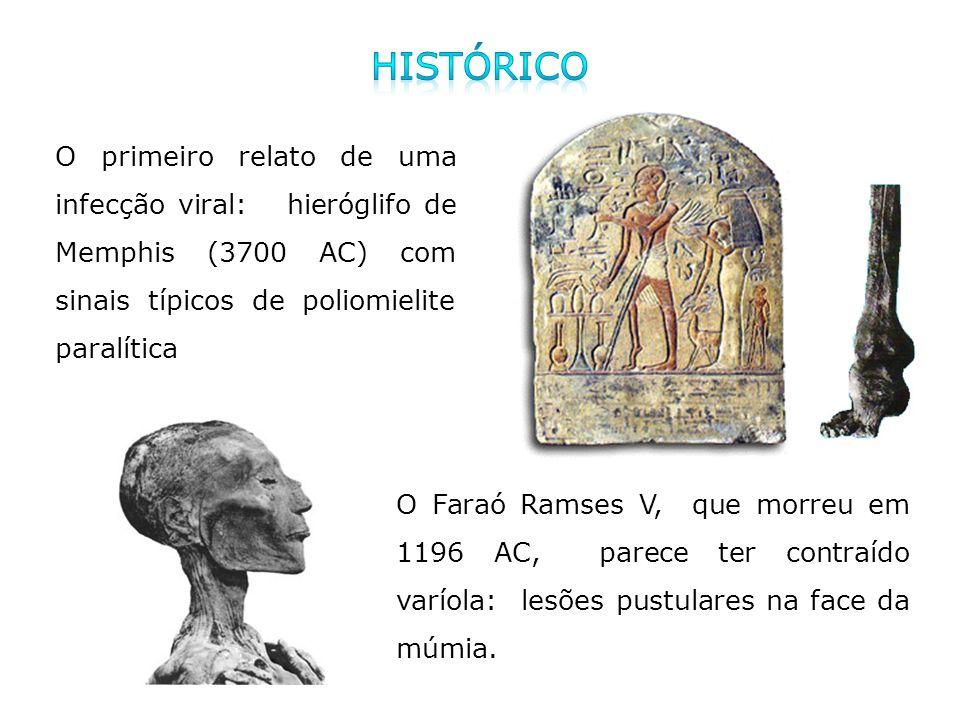 O primeiro relato de uma infecção viral: hieróglifo de Memphis (3700 AC) com sinais típicos de poliomielite paralítica O Faraó Ramses V, que morreu em