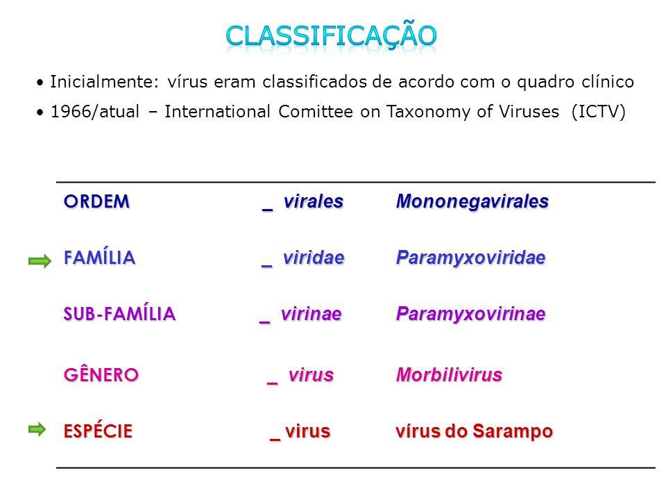 Inicialmente: vírus eram classificados de acordo com o quadro clínico 1966/atual – International Comittee on Taxonomy of Viruses (ICTV)ORDEM _ virales