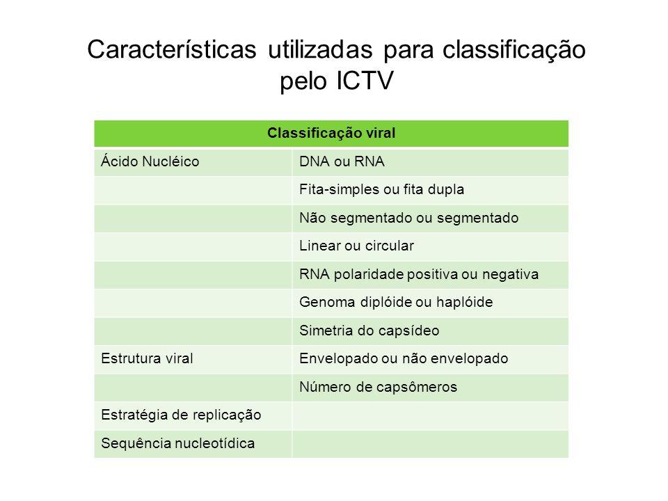 Características utilizadas para classificação pelo ICTV Classificação viral Ácido NucléicoDNA ou RNA Fita-simples ou fita dupla Não segmentado ou segm