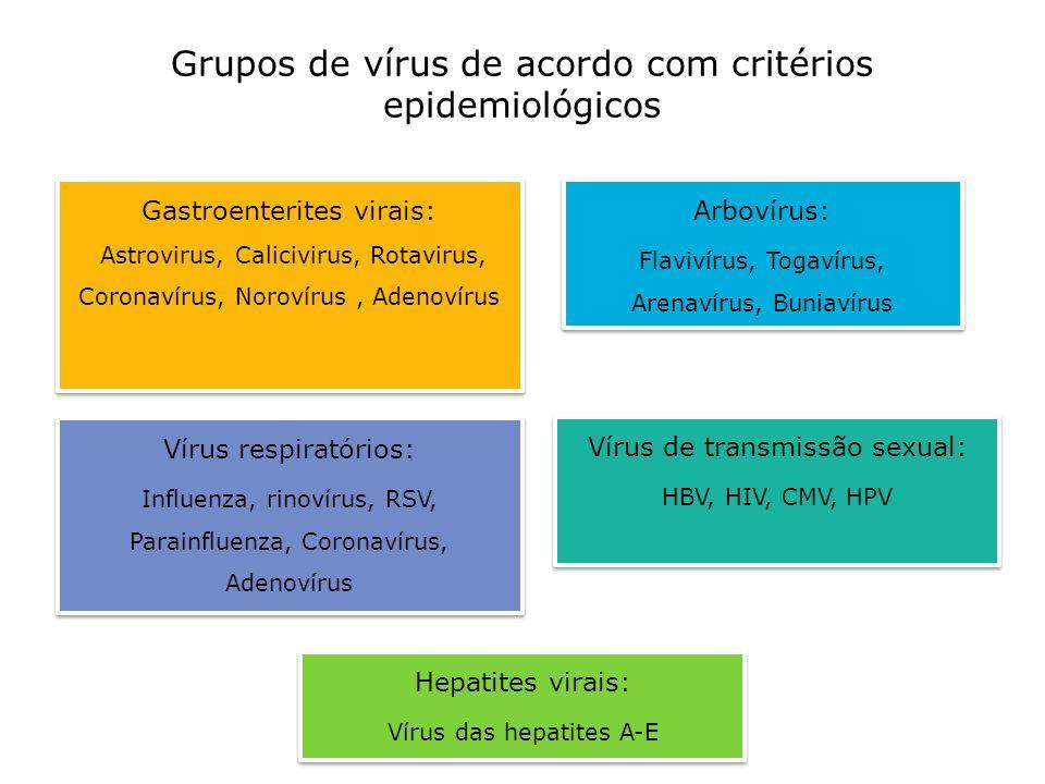 Grupos de vírus de acordo com critérios epidemiológicos Hepatites virais: Vírus das hepatites A-E Hepatites virais: Vírus das hepatites A-E Vírus resp