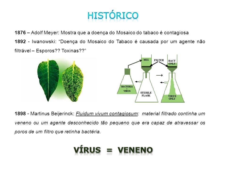 1876 – Adolf Meyer: Mostra que a doença do Mosaico do tabaco é contagiosa 1892 - Iwanowski: Doença do Mosaico do Tabaco é causada por um agente não fi