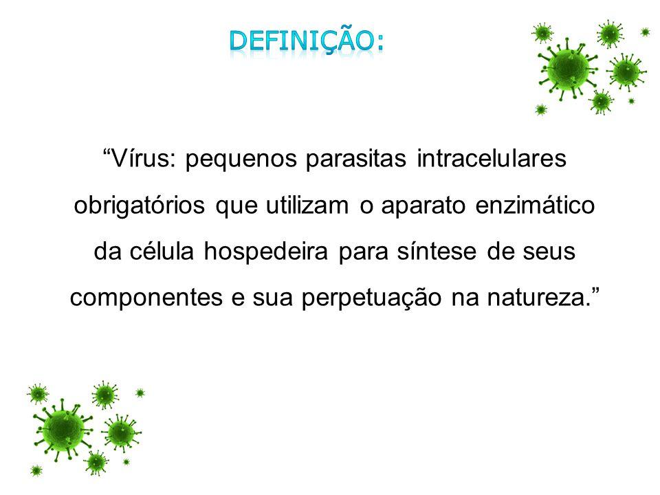 Vírus: pequenos parasitas intracelulares obrigatórios que utilizam o aparato enzimático da célula hospedeira para síntese de seus componentes e sua pe