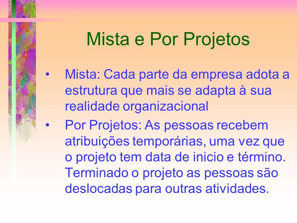 Mista e Por Projetos Mista: Cada parte da empresa adota a estrutura que mais se adapta à sua realidade organizacional Por Projetos: As pessoas recebem