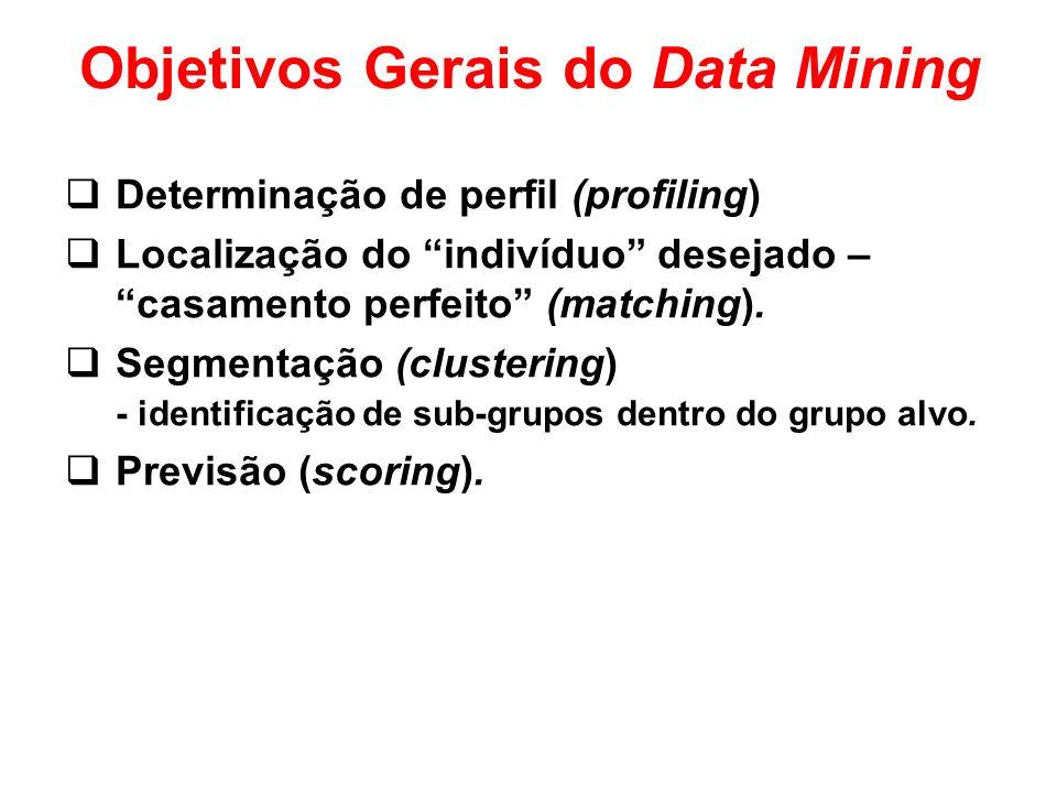 Objetivos Gerais do Data Mining Determinação de perfil (profiling) Localização do indivíduo desejado – casamento perfeito (matching). Segmentação (clu