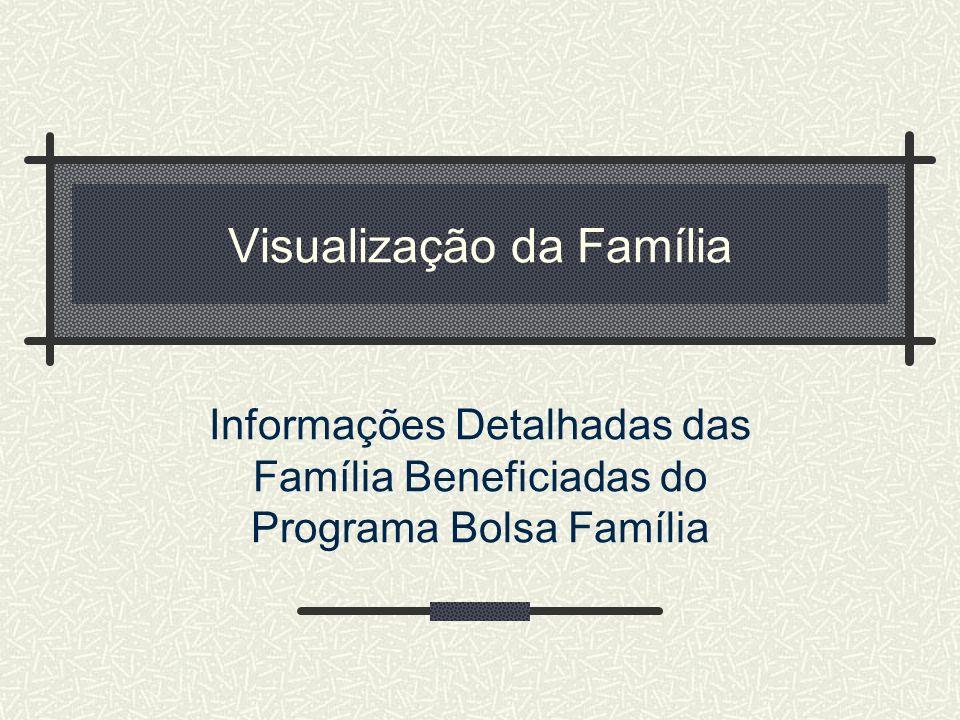 Visualização da Família Informações Detalhadas das Família Beneficiadas do Programa Bolsa Família