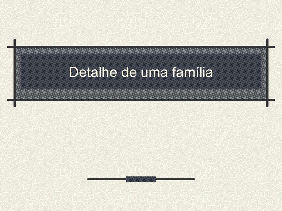 Detalhe de uma família