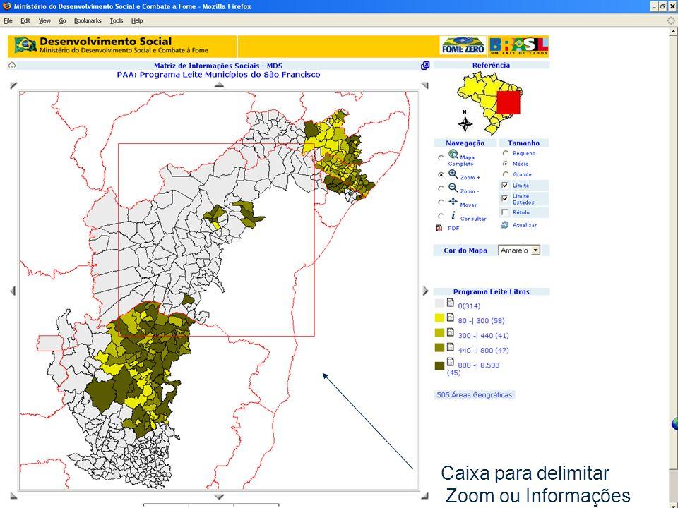 abril/2006 MDS/ Diretoria de Gestão da Informação/Coordenação de Recursos Informacionais 30 Caixa para delimitar Zoom ou Informações