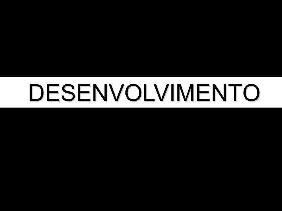 DESENVOLVIMENTO DESENVOLVIMENTO