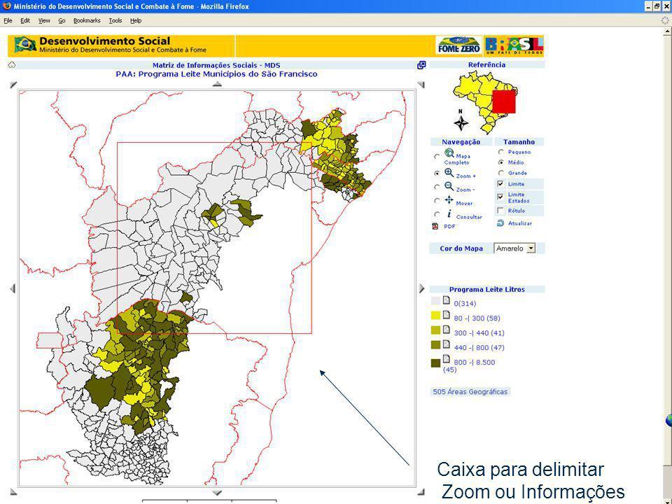 12/dez/2005 MDS/ Diretoria de Gestão da Informação/Coordenação de Recursos Informacionais 30 Caixa para delimitar Zoom ou Informações
