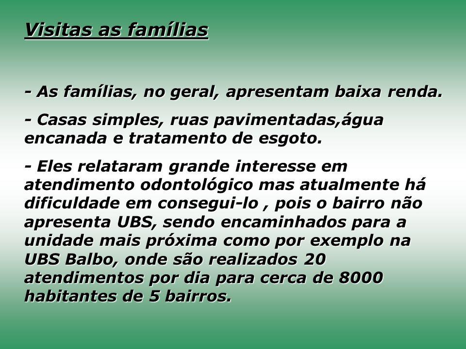 Visitas as famílias - As famílias, no geral, apresentam baixa renda. - Casas simples, ruas pavimentadas,água encanada e tratamento de esgoto. - Eles r
