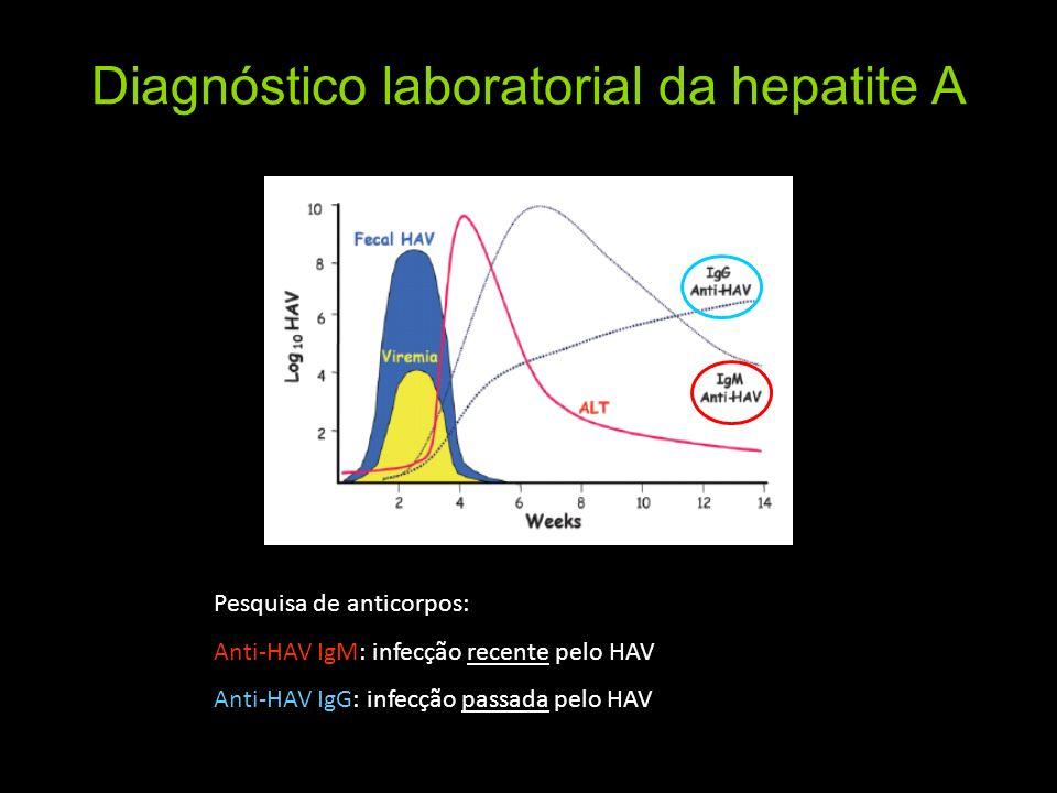 Diagnóstico laboratorial da hepatite A Pesquisa de anticorpos: Anti-HAV IgM: infecção recente pelo HAV Anti-HAV IgG: infecção passada pelo HAV