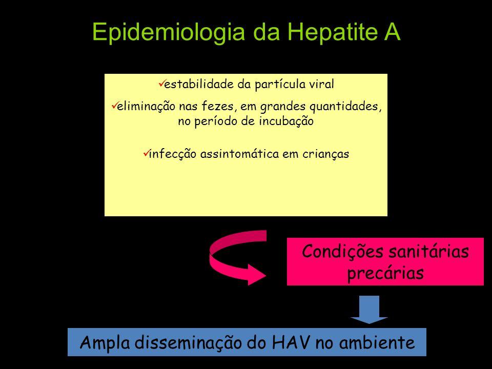 Epidemiologia da Hepatite A estabilidade da partícula viral eliminação nas fezes, em grandes quantidades, no período de incubação infecção assintomáti