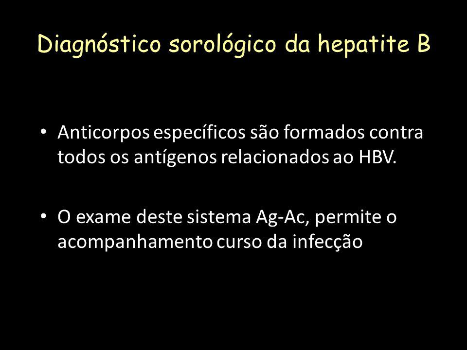 Diagnóstico sorológico da hepatite B Anticorpos específicos são formados contra todos os antígenos relacionados ao HBV. O exame deste sistema Ag-Ac, p