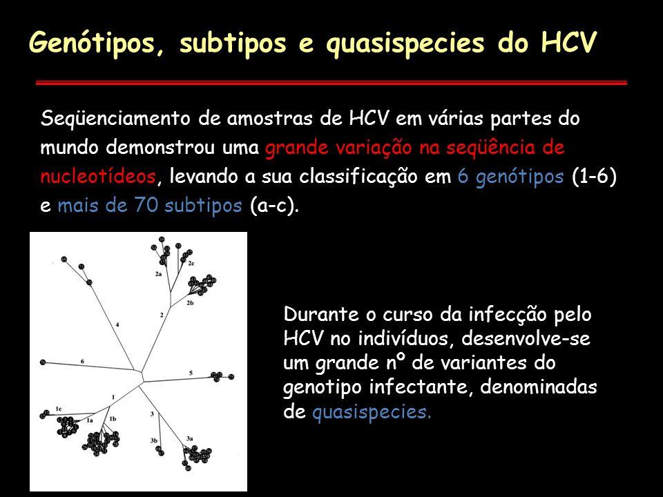 Durante o curso da infecção pelo HCV no indivíduos, desenvolve-se um grande nº de variantes do genotipo infectante, denominadas de quasispecies. Genót