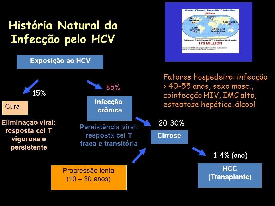 História Natural da Infecção pelo HCV Exposição ao HCV Cirrose 20-30% Infecção crônica 85% Cura 15% Progressão lenta (10 – 30 anos) Fatores hospedeiro