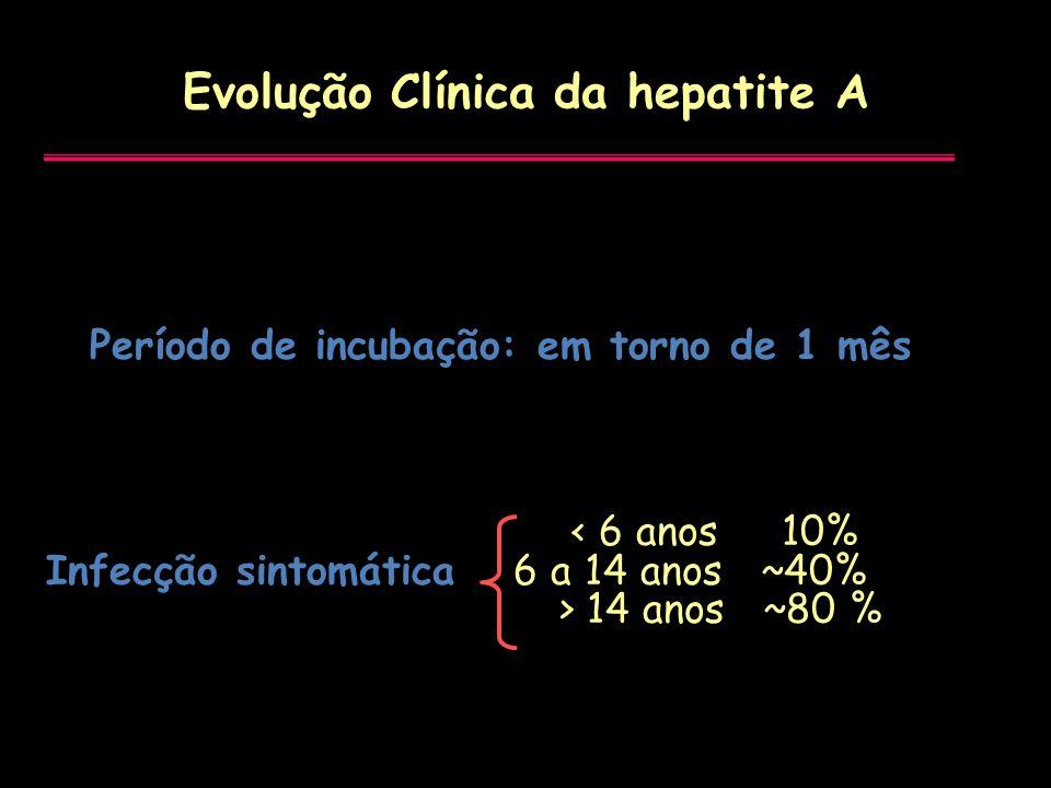 Evolução Clínica da hepatite A < 6 anos 10% Infecção sintomática 6 a 14 anos ~40% > 14 anos ~80 % Período de incubação: em torno de 1 mês