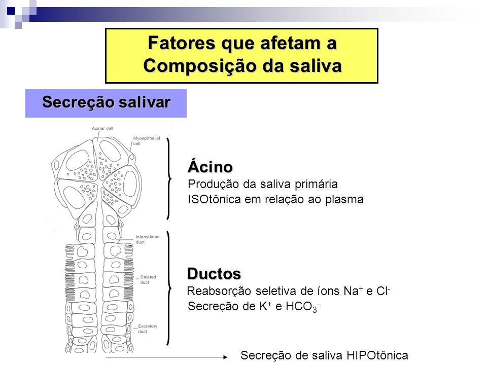 Secreção de saliva HIPOtônica Fatores que afetam a Composição da saliva Secreção salivar Secreção salivar Ductos Reabsorção seletiva de íons Na + e Cl