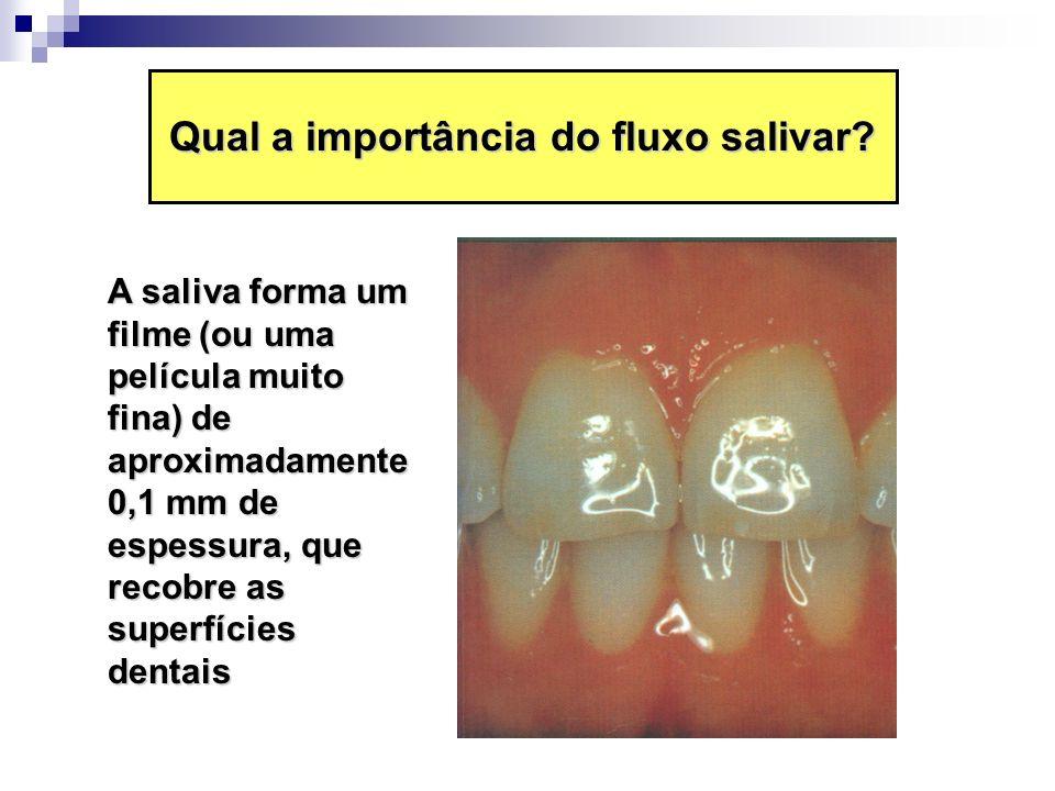 Qual a importância do fluxo salivar? A saliva forma um filme (ou uma película muito fina) de aproximadamente 0,1 mm de espessura, que recobre as super