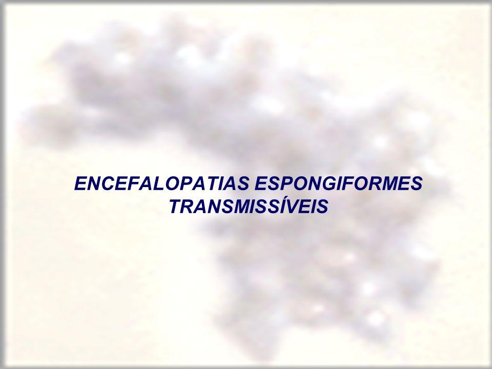 PROTEÍNA ANORMAL (PrPSc) Derivada da proteína normal (mutação/alteração conformacional) – 27-30 KDa Modificação pós-traducional Conformação diferente Forma agregados- fibrilas Resistente a proteases Resistente ao calor insolúvel Nas hereditárias, o gene está mutado origem: mutações e PrP alterada pela PrPsc