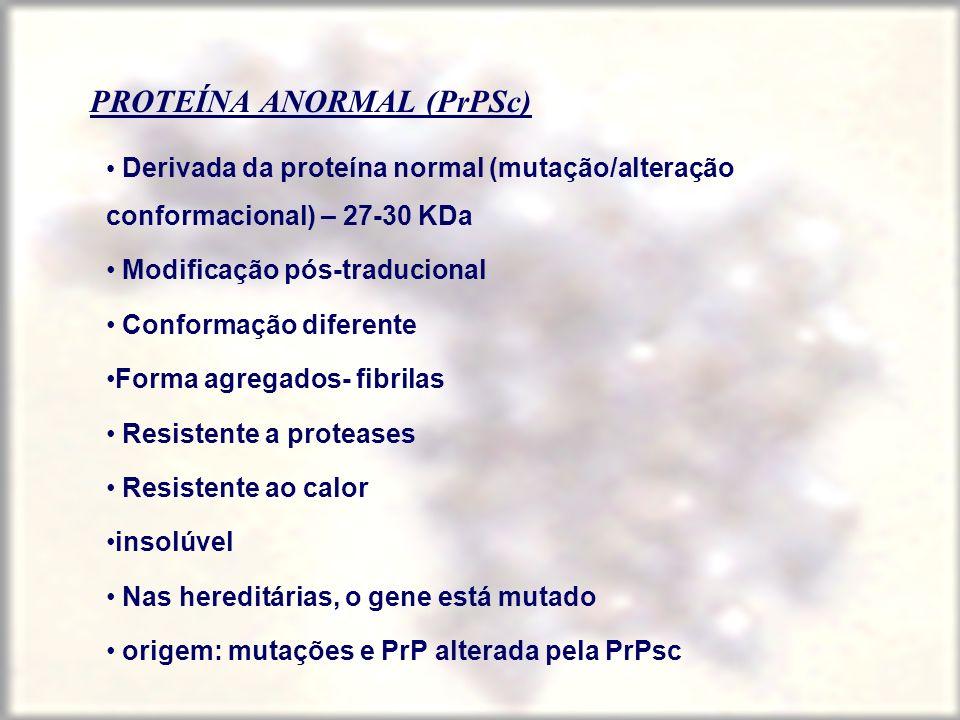 PROTEÍNA ANORMAL (PrPSc) Derivada da proteína normal (mutação/alteração conformacional) – 27-30 KDa Modificação pós-traducional Conformação diferente