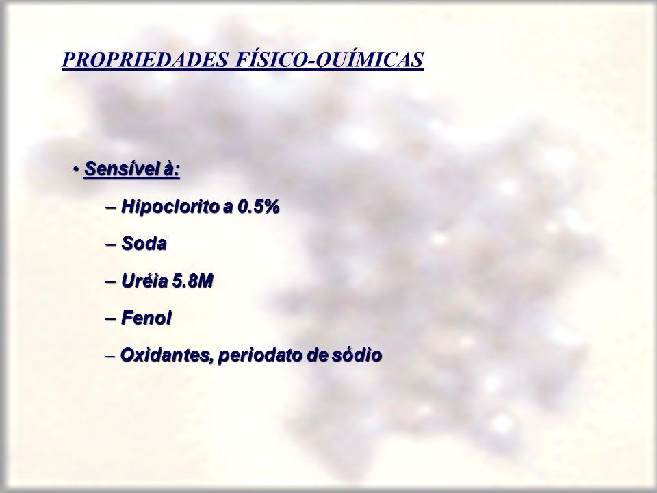 PROPRIEDADES FÍSICO-QUÍMICAS Sensível à: Sensível à: – Hipoclorito a 0.5% – Soda – Uréia 5.8M – Fenol – Oxidantes, periodato de sódio