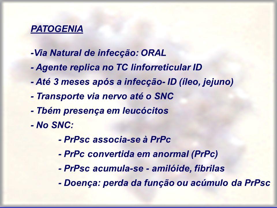 PATOGENIA -Via Natural de infecção: ORAL - Agente replica no TC linforreticular ID - Até 3 meses após a infecção- ID (íleo, jejuno) - Transporte via n