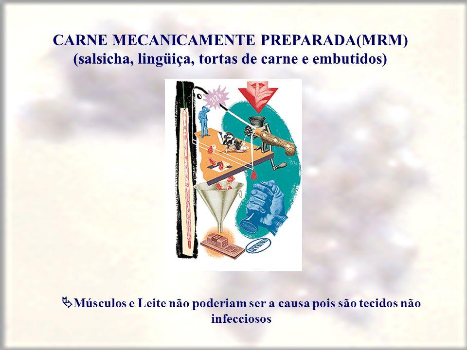 CARNE MECANICAMENTE PREPARADA(MRM) (salsicha, lingüiça, tortas de carne e embutidos) Músculos e Leite não poderiam ser a causa pois são tecidos não in