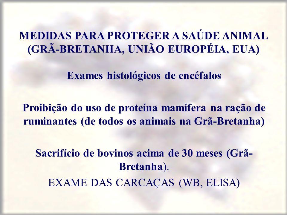 MEDIDAS PARA PROTEGER A SAÚDE ANIMAL (GRÃ-BRETANHA, UNIÃO EUROPÉIA, EUA) Exames histológicos de encéfalos Proibição do uso de proteína mamífera na raç