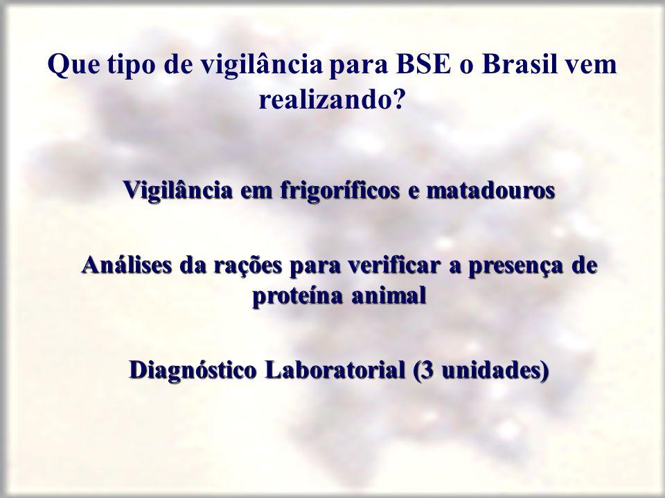 Que tipo de vigilância para BSE o Brasil vem realizando? Vigilância em frigoríficos e matadouros Análises da rações para verificar a presença de prote
