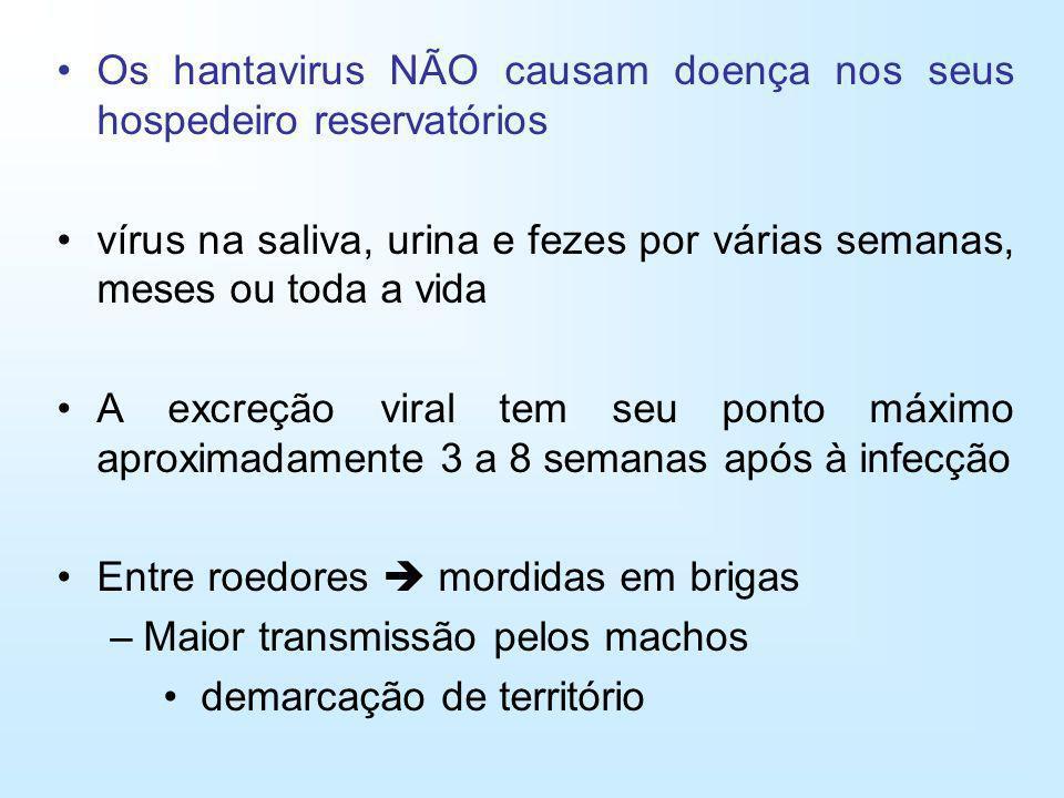 Os hantavirus NÃO causam doença nos seus hospedeiro reservatórios vírus na saliva, urina e fezes por várias semanas, meses ou toda a vida A excreção v