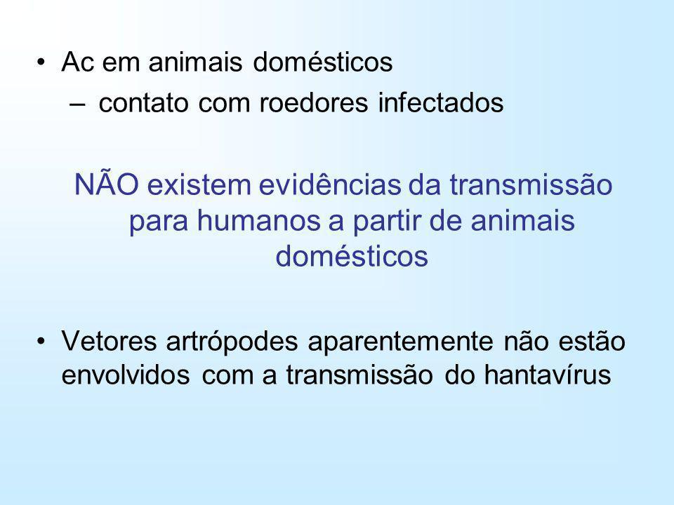 Ac em animais domésticos – contato com roedores infectados NÃO existem evidências da transmissão para humanos a partir de animais domésticos Vetores a