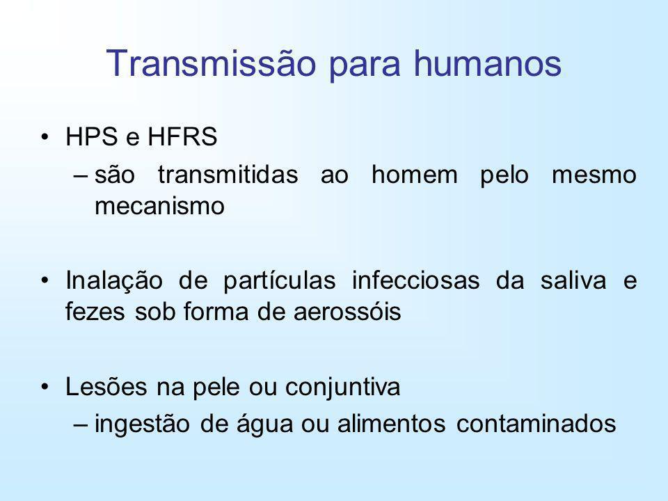 Transmissão para humanos HPS e HFRS –são transmitidas ao homem pelo mesmo mecanismo Inalação de partículas infecciosas da saliva e fezes sob forma de