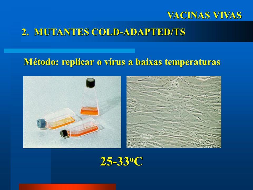 VACINAS VIVAS 2. MUTANTES COLD-ADAPTED/TS Método: replicar o vírus a baixas temperaturas 25-33 o C