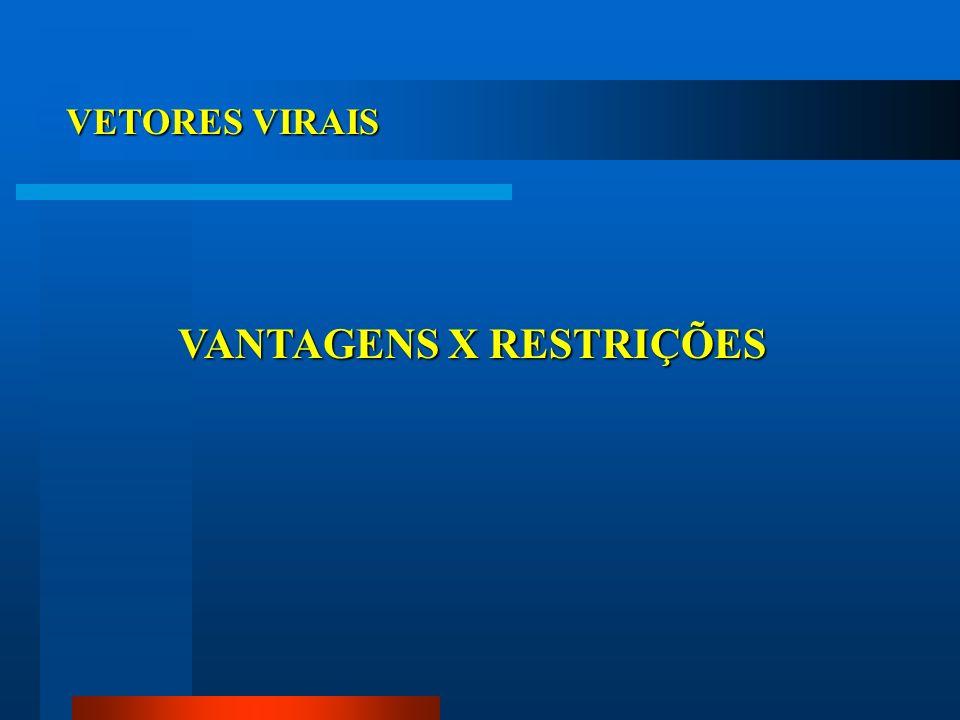 VETORES VIRAIS VANTAGENS X RESTRIÇÕES